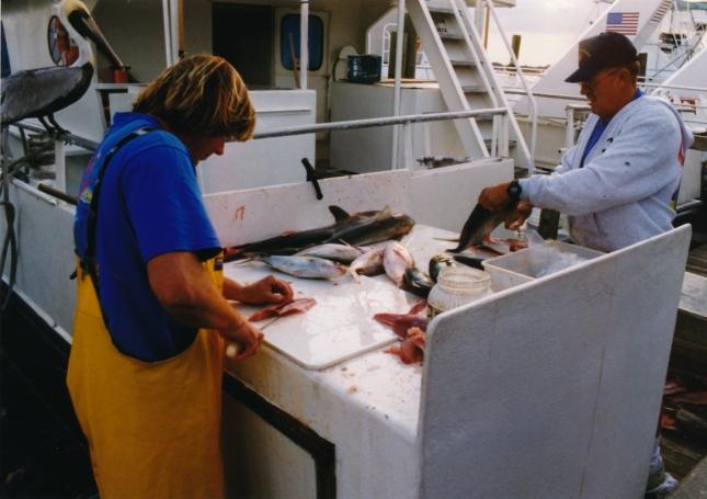 Fishing 2 1998